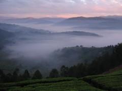 rwanda-view.jpg
